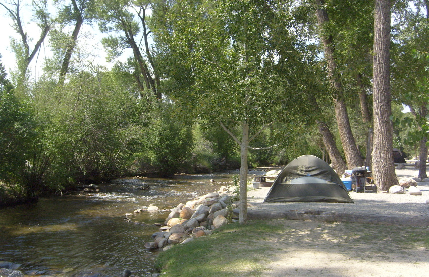 Chalk creek campground buena vista salida nathrop for Camping and fishing in colorado